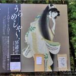 うらめしや~、冥途のみやげ展の感想(2015年:東京藝術大学大学美術館)