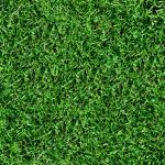 【フリー素材】芝生写真のシームレス画像|壁紙・サイトの背景用(商用可・加工可)